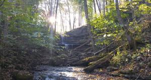 Waterfall-@-Hopscotch-House-10-22-16[2]